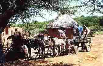 A Traditional Tswana Village